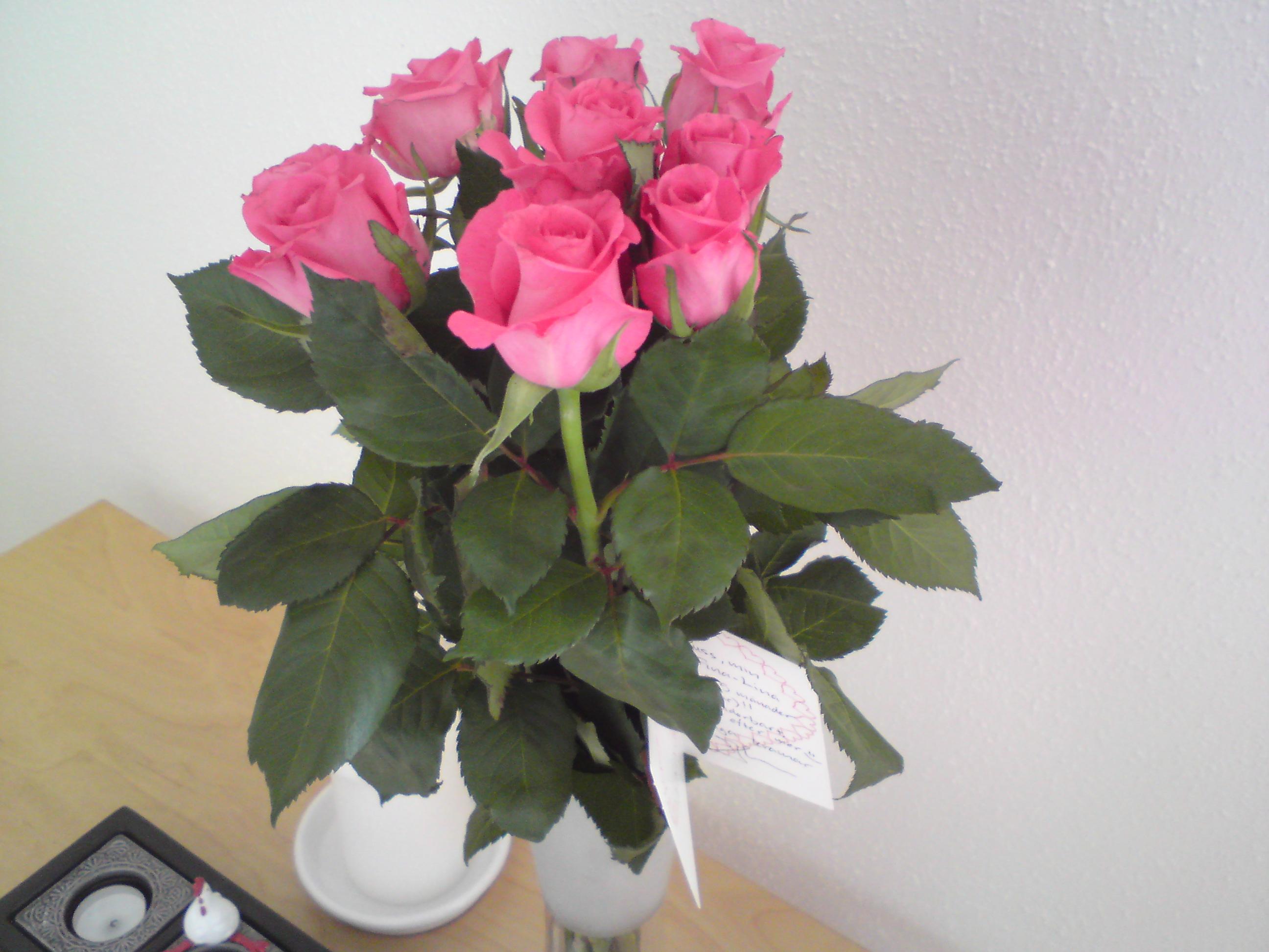 Rosor från J