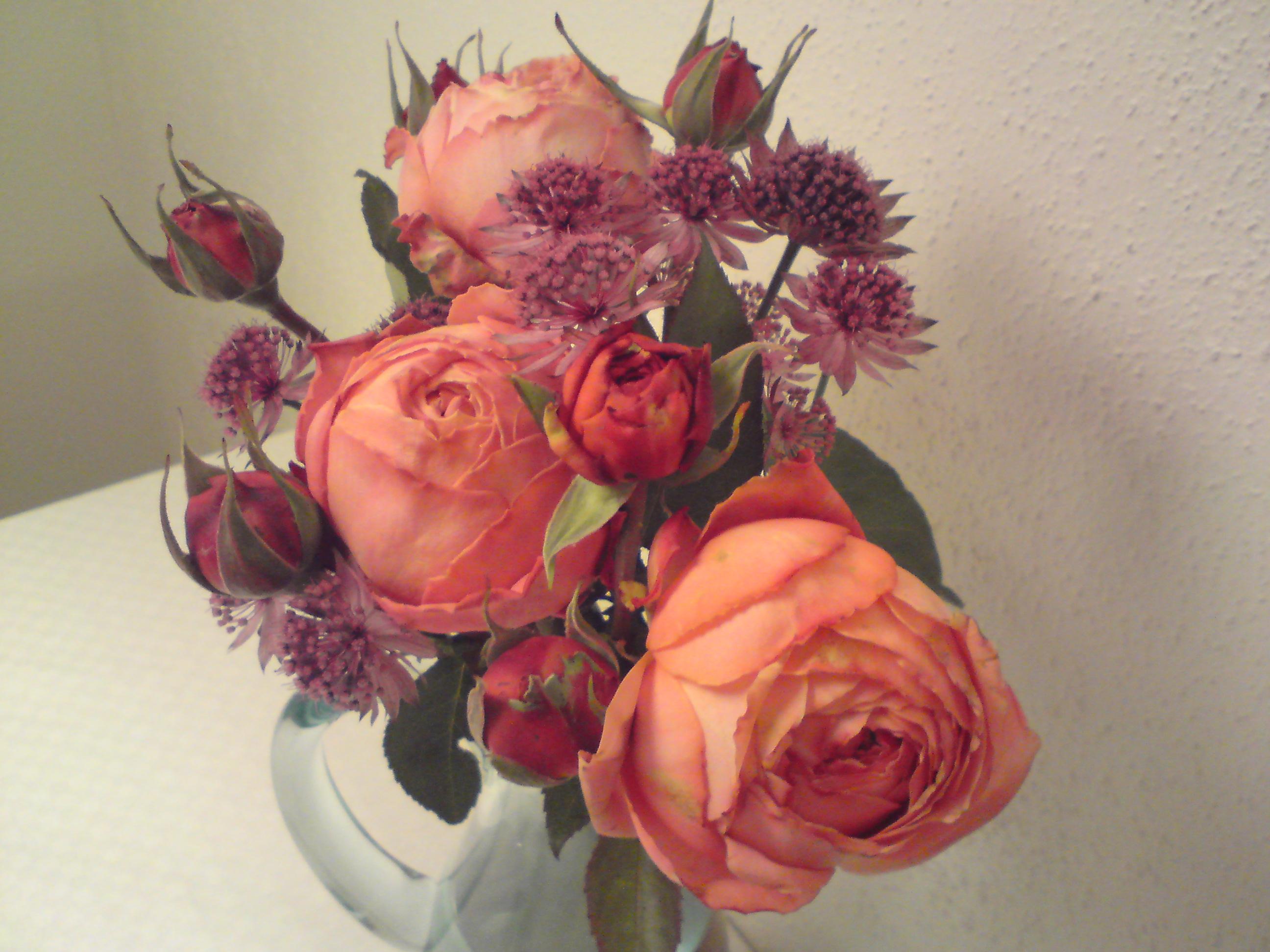 Mina rosor