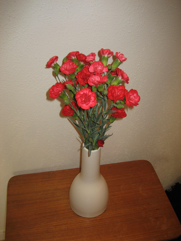 Blommorna på bordet